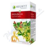 Megafyt Průdušková čajová směs por. spc. 20x1. 5g