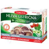 TEREZIA Hlíva ústřičná+lactobacily+vit. C cps. 60