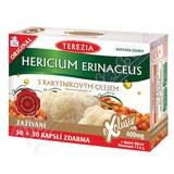 TEREZIA Hericium erinaceus s rakyt. olejem cps. 60