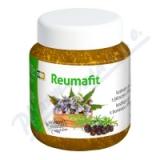 REUMAFIT kostivalový gel s jalovcem+MSM 350g
