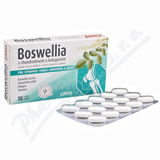 Favea Boswellia s chondroitinem a kolagenem tbl. 30